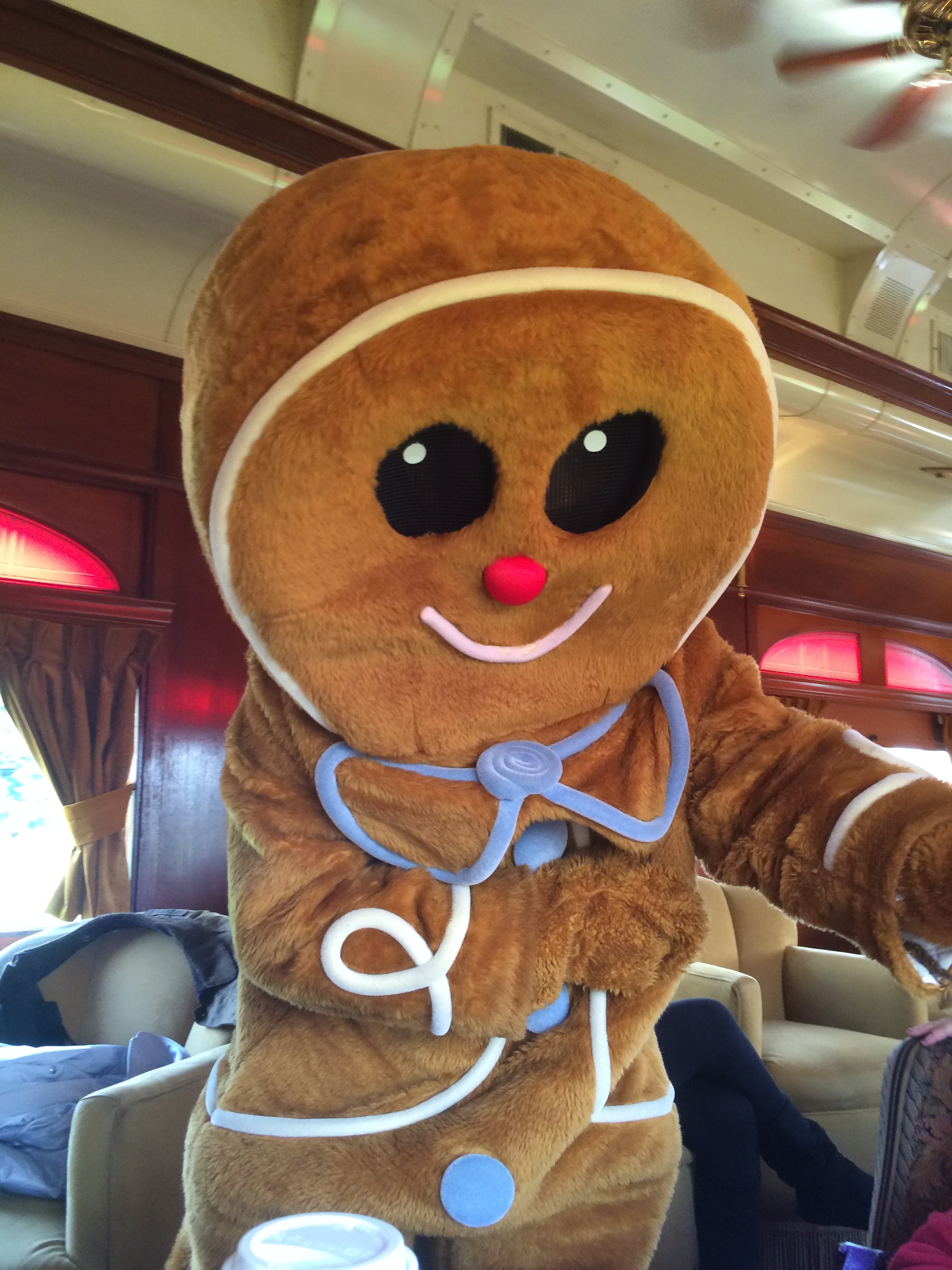 Photo by Steve Villano, taken aboard Santa Wine Train, Napa Valley, where Gingerbread People of Color are welcome...